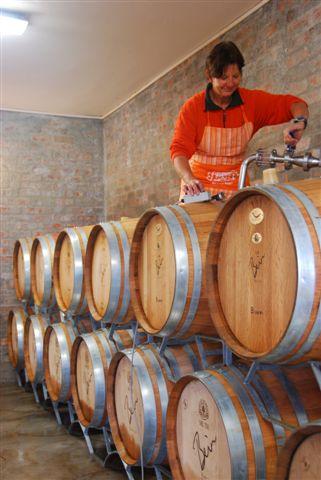 Bein Wine Weinkeller